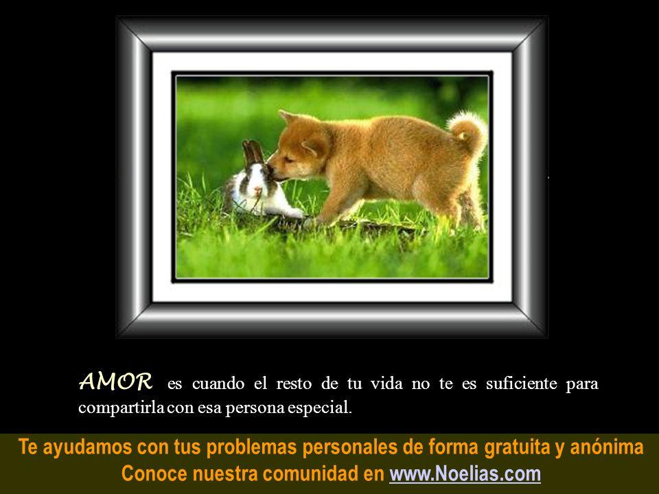 Te ayudamos con tus problemas personales de forma gratuita y anónima Conoce nuestra comunidad en www.Noelias.comwww.Noelias.com Pasión es cuando, a pe