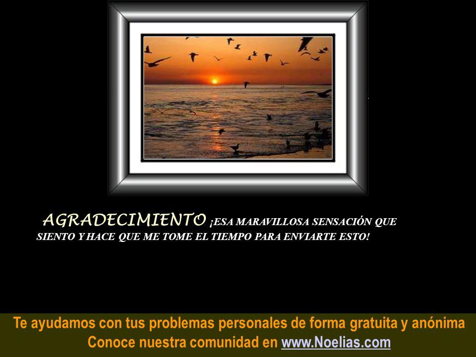 Te ayudamos con tus problemas personales de forma gratuita y anónima Conoce nuestra comunidad en www.Noelias.comwww.Noelias.com AMOR es cuando el rest