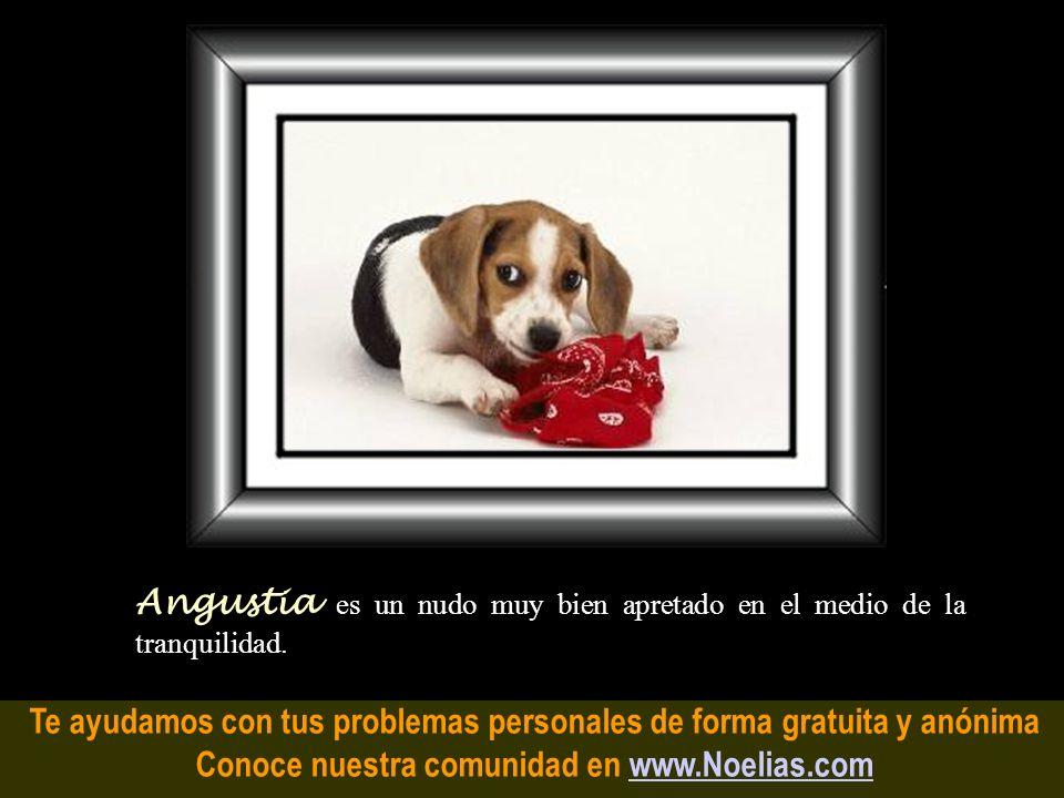 Te ayudamos con tus problemas personales de forma gratuita y anónima Conoce nuestra comunidad en www.Noelias.comwww.Noelias.com Recuerdo es cuando, si