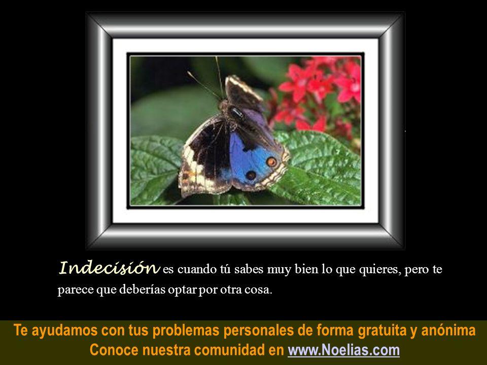 Te ayudamos con tus problemas personales de forma gratuita y anónima Conoce nuestra comunidad en www.Noelias.comwww.Noelias.com Preocupación es como u
