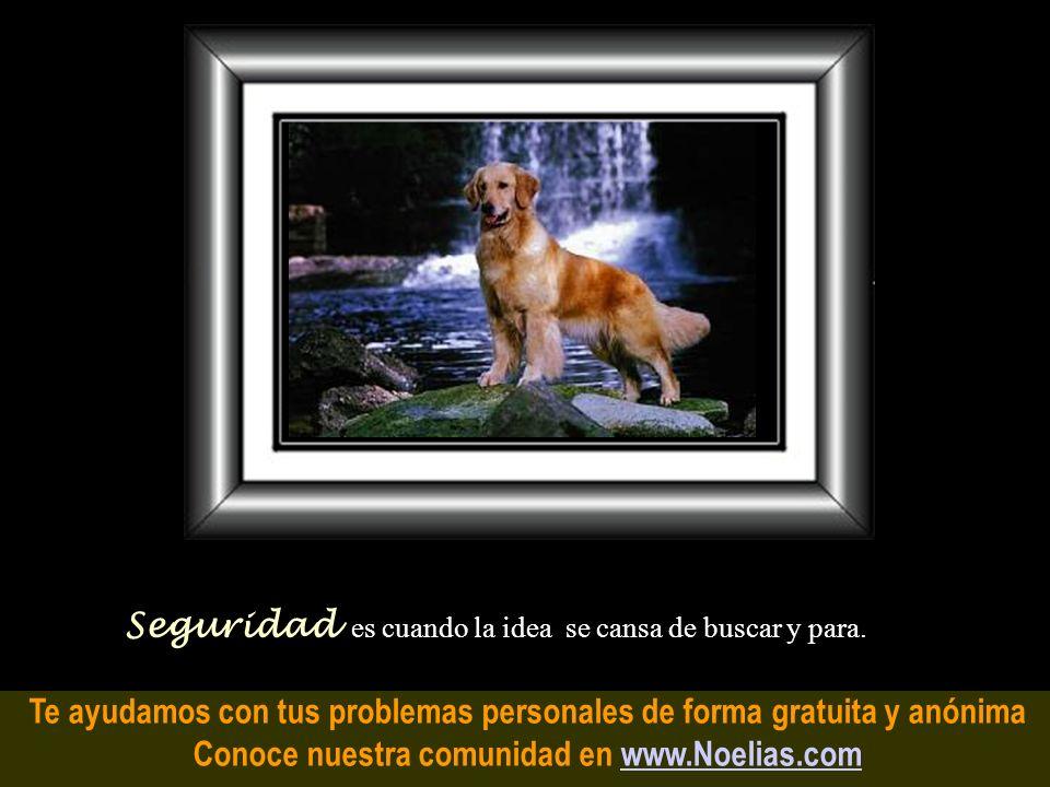 Te ayudamos con tus problemas personales de forma gratuita y anónima Conoce nuestra comunidad en www.Noelias.comwww.Noelias.com Indecisión es cuando t