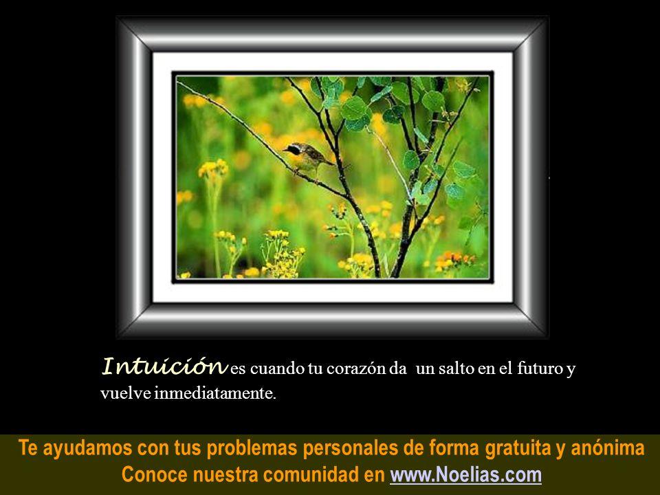 Te ayudamos con tus problemas personales de forma gratuita y anónima Conoce nuestra comunidad en www.Noelias.comwww.Noelias.com Seguridad es cuando la
