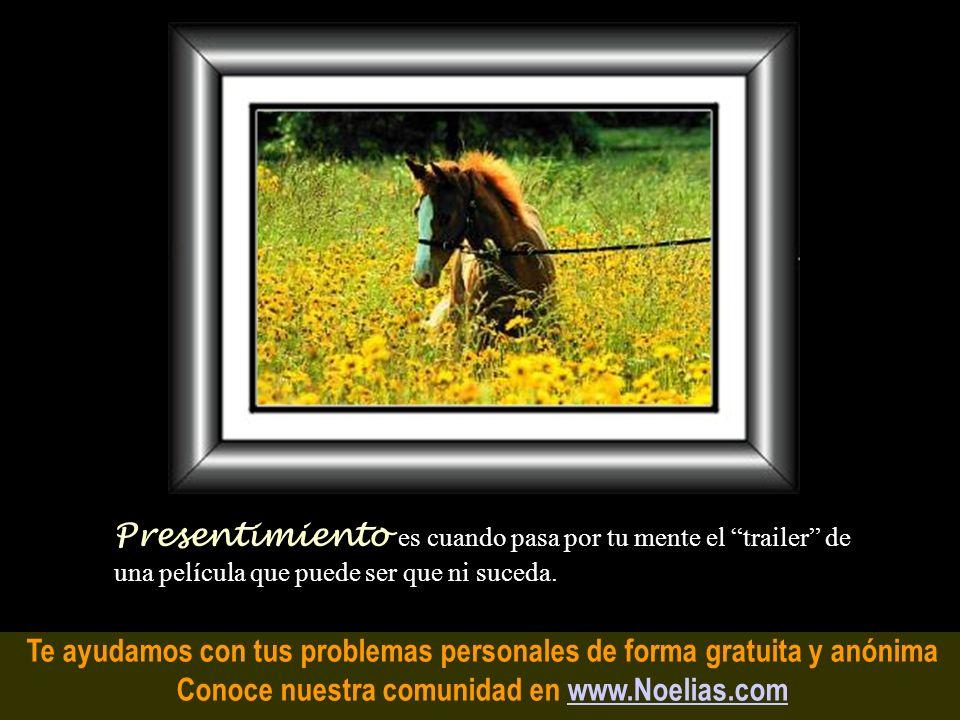 Te ayudamos con tus problemas personales de forma gratuita y anónima Conoce nuestra comunidad en www.Noelias.comwww.Noelias.com Intuición es cuando tu