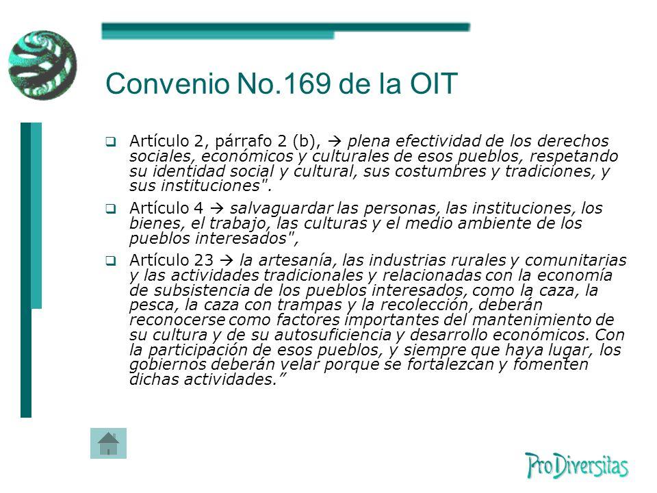 Convenio No.169 de la OIT Artículo 2, párrafo 2 (b), plena efectividad de los derechos sociales, económicos y culturales de esos pueblos, respetando su identidad social y cultural, sus costumbres y tradiciones, y sus instituciones .