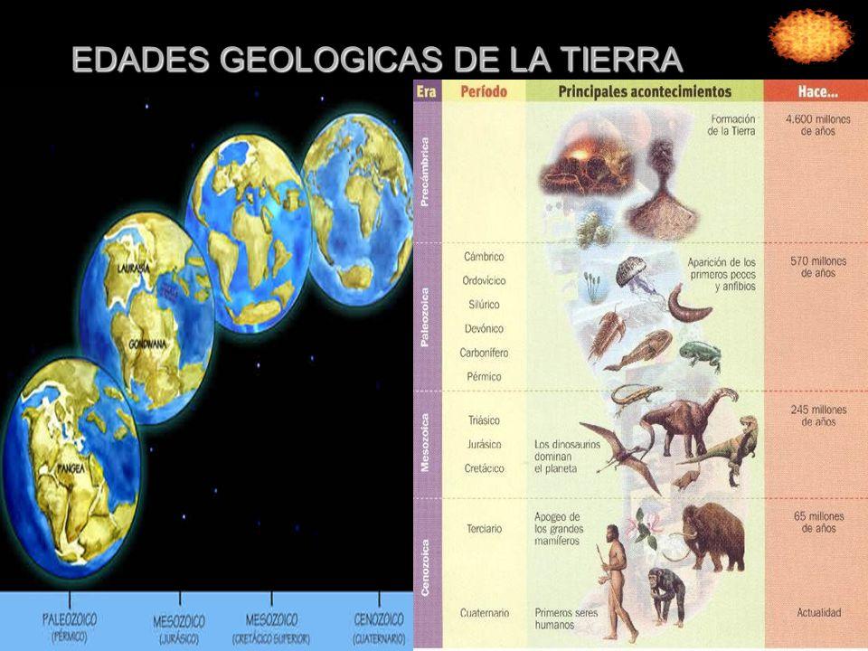 Era azoica Que se calcula duró hasta hacia unos 500 millones de años.