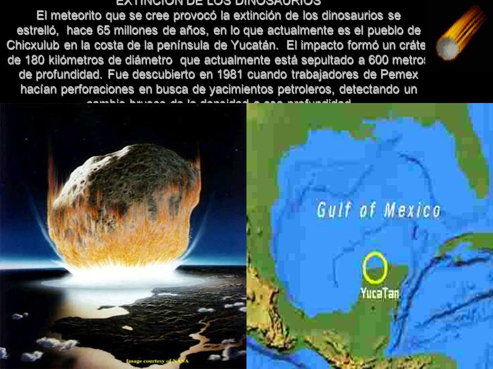 EXTINCION DE LOS DINOSAURIOS El meteorito que se cree provocó la extinción de los dinosaurios se estrelló, hace 65 millones de años, en lo que actualm