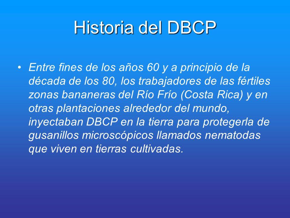 Historia del DBCP Los trabajadores no usaban guantes, ni ropa protectora, ni equipo de ninguna clase que previniese la absorción por medio de la piel o la inhalación del producto.