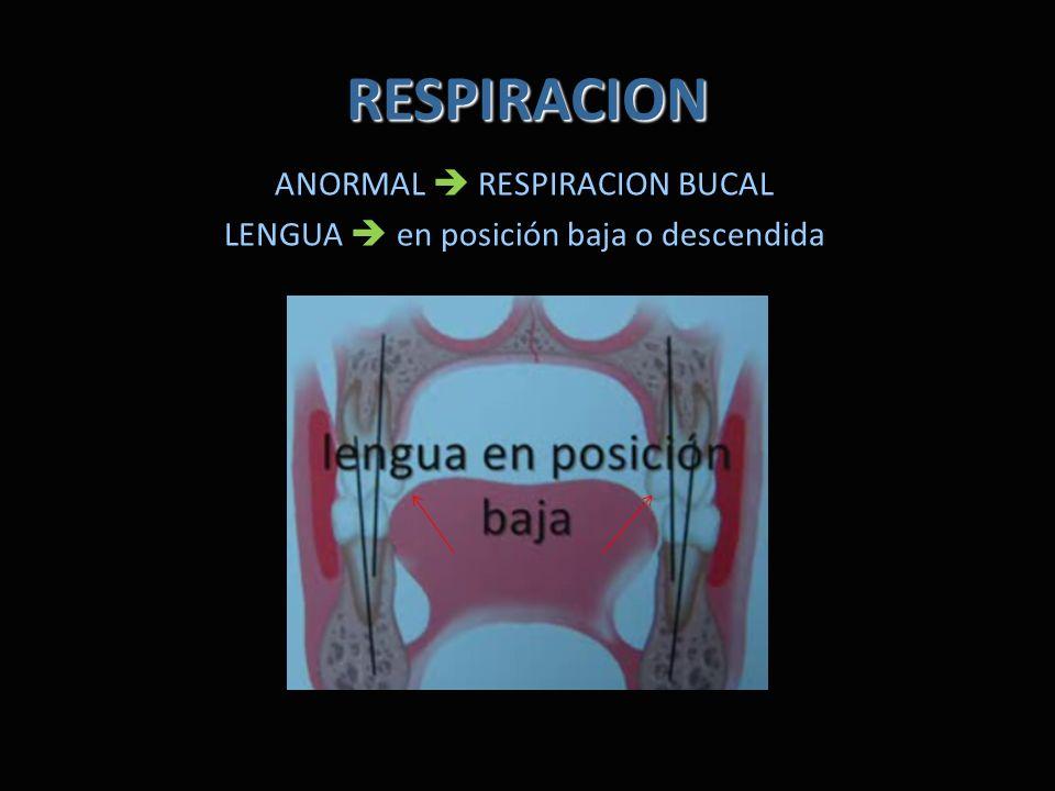RESPIRACION ANORMAL RESPIRACION BUCAL LENGUA en posición baja o descendida