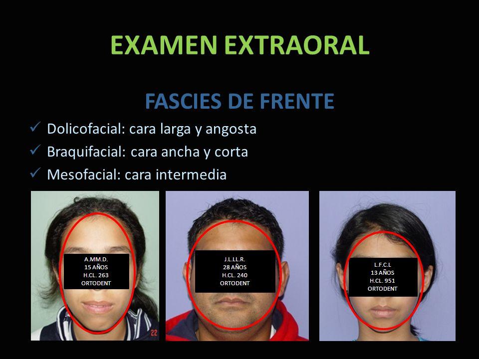 EXAMEN EXTRAORAL FASCIES DE FRENTE Dolicofacial: cara larga y angosta Braquifacial: cara ancha y corta Mesofacial: cara intermedia