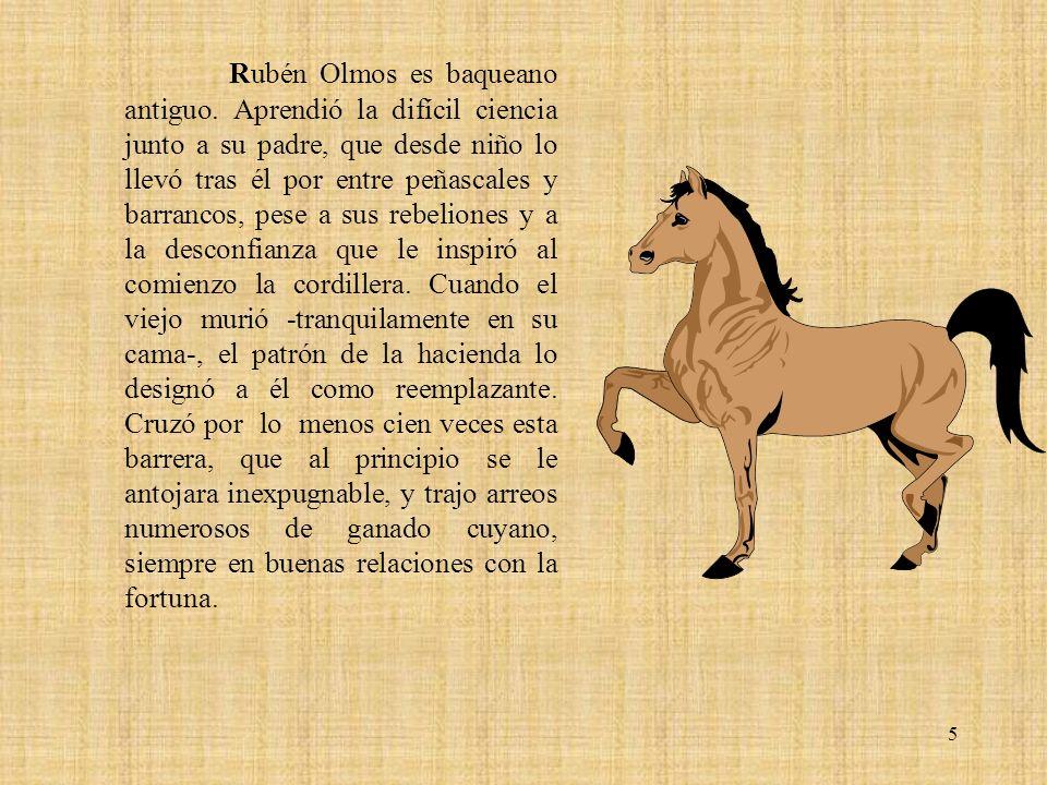5 Rubén Olmos es baqueano antiguo. Aprendió la difícil ciencia junto a su padre, que desde niño lo llevó tras él por entre peñascales y barrancos, pes