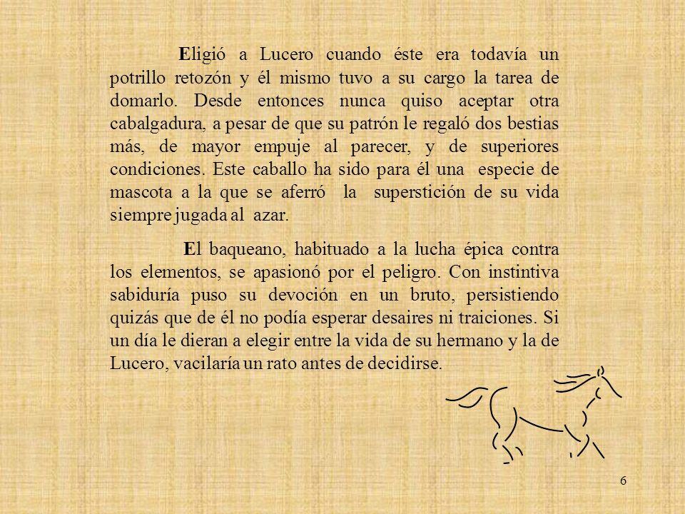 6 Eligió a Lucero cuando éste era todavía un potrillo retozón y él mismo tuvo a su cargo la tarea de domarlo.