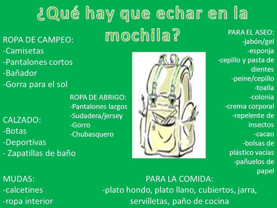 ROPA DE CAMPEO: -Camisetas -Pantalones cortos -Bañador -Gorra para el sol PARA EL ASEO: -jabón/gel -esponja -cepillo y pasta de dientes -peine/cepillo