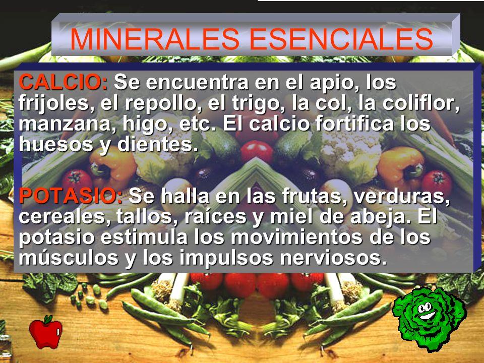 MINERALES ESENCIALES CALCIO: Se encuentra en el apio, los frijoles, el repollo, el trigo, la col, la coliflor, manzana, higo, etc.