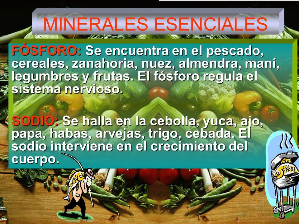 MINERALES ESENCIALES FÓSFORO: Se encuentra en el pescado, cereales, zanahoria, nuez, almendra, maní, legumbres y frutas.