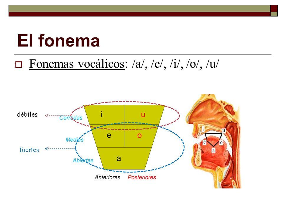 Fonemas vocálicos: /a/, /e/, /i/, /o/, /u/ El fonema débiles fuertes