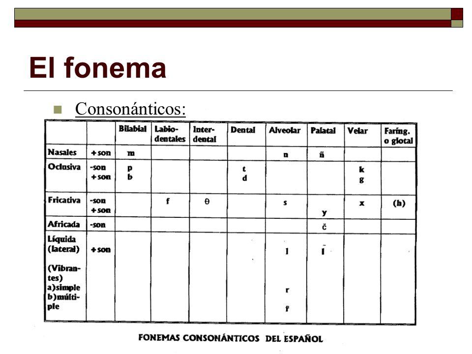 Consonánticos: El fonema