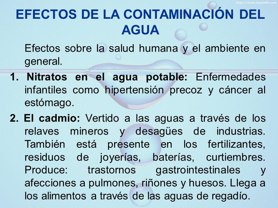 EFECTOS DE LA CONTAMINACIÓN DEL AGUA 3.El mercurio: Procede de pilas, fotos, pintura, minería.