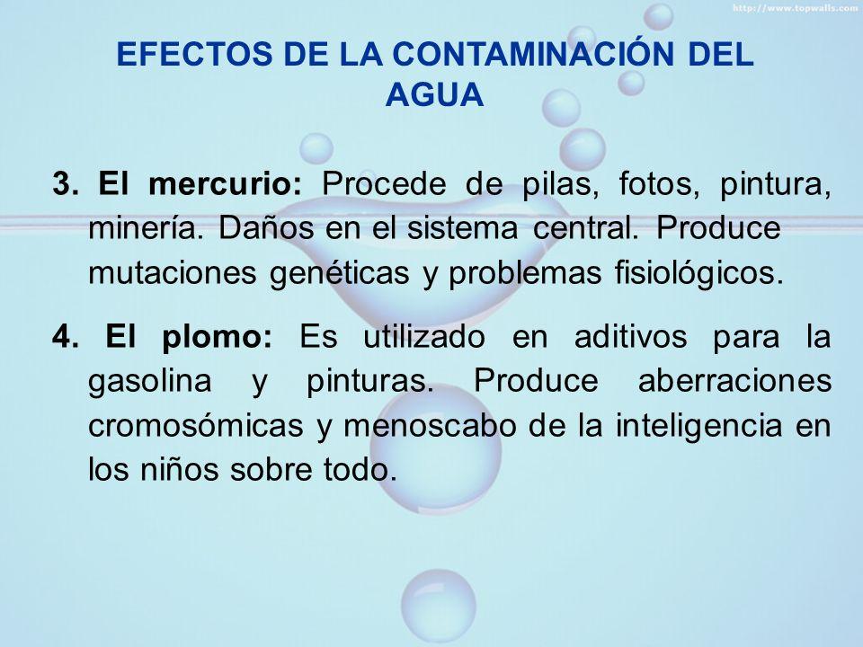 El efecto de la eutrofización Tipo de contaminación que se produce en los lagos.