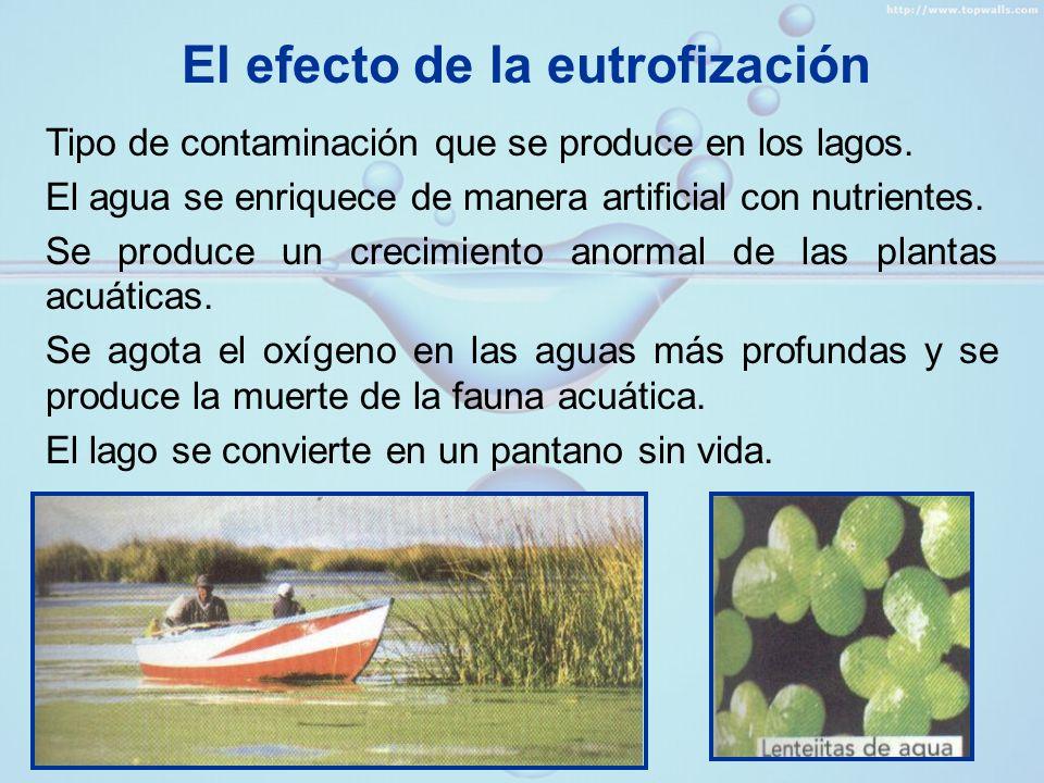 TRATAMIENTO DEL AGUA » Depuración natural Durante el ciclo hidrológico, el agua se evapora y sube en forma de vapor, dejando minerales y otras sustancias disueltas en ella.