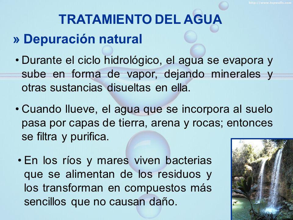 » Tratamiento de las aguas servidas En muchas ciudades, las aguas servidas o aguas negras son tratadas antes de ser devueltas a los ríos, lagos o mar.