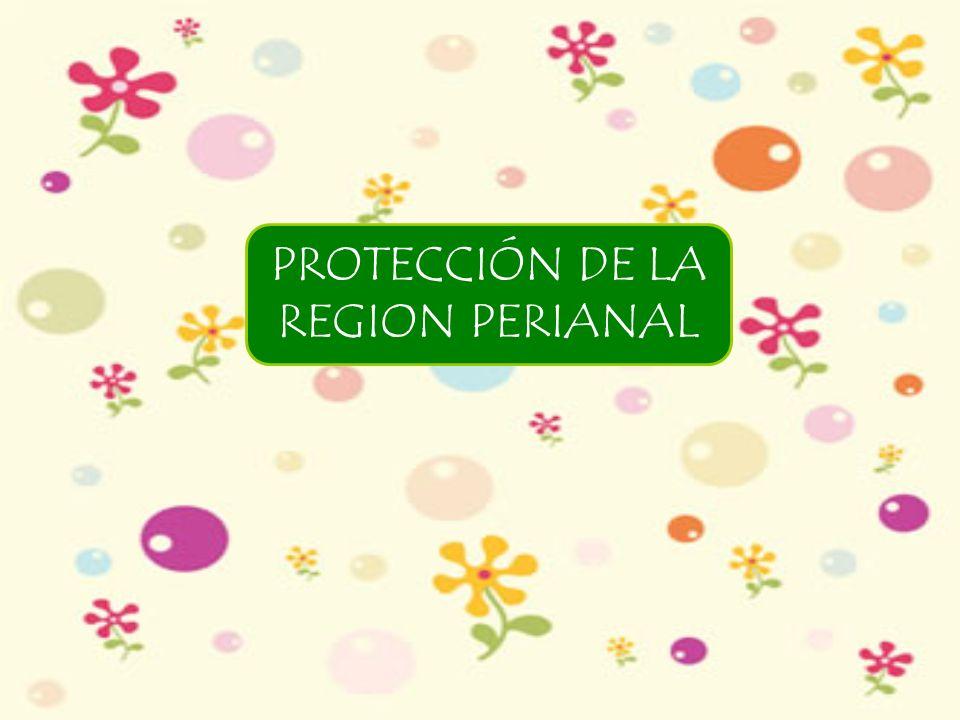 PROTECCIÓN DE LA REGION PERIANAL