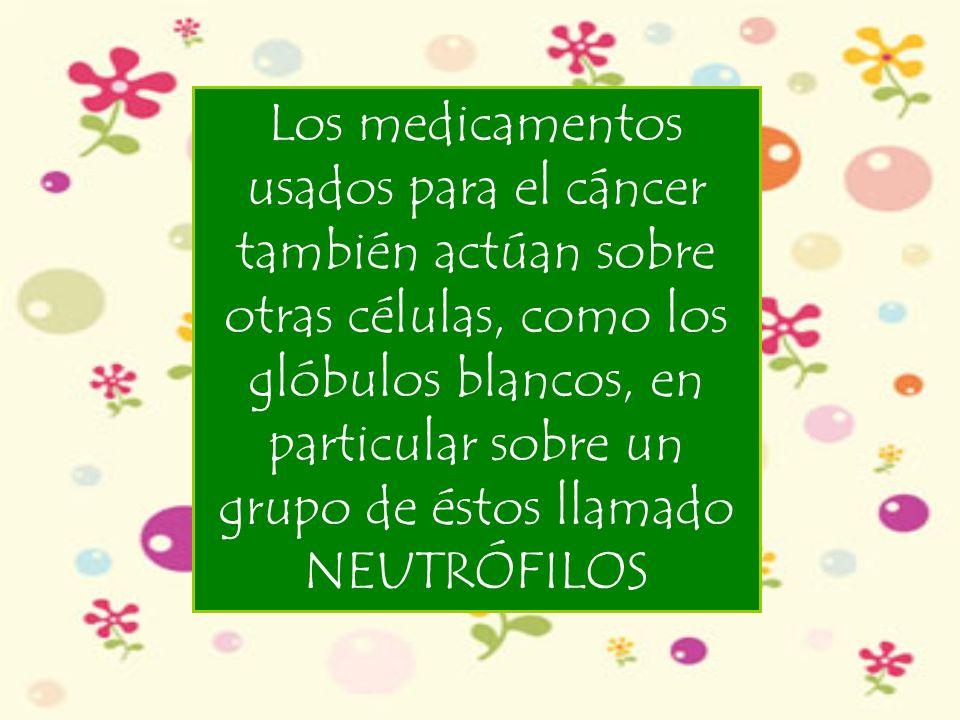 Los neutrófilos son los encargados de proteger al organismo contra las agresiones.