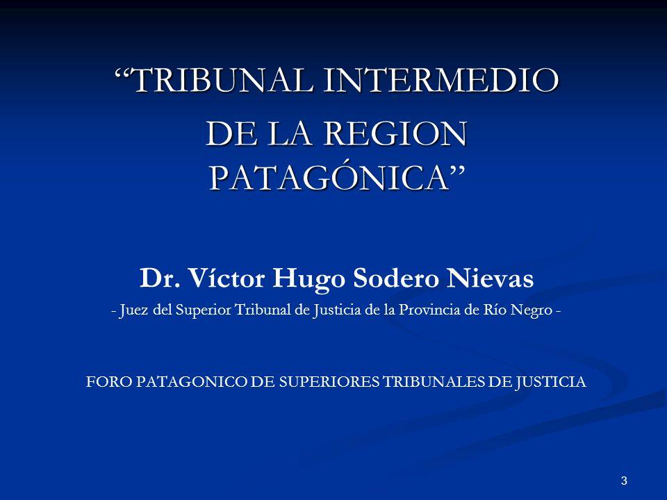 3 TRIBUNAL INTERMEDIO DE LA REGION PATAGÓNICA Dr. Víctor Hugo Sodero Nievas - Juez del Superior Tribunal de Justicia de la Provincia de Río Negro - FO