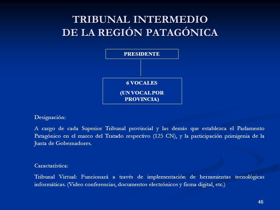 46 TRIBUNAL INTERMEDIO DE LA REGIÓN PATAGÓNICA PRESIDENTE 6 VOCALES (UN VOCAL POR PROVINCIA) Designación: A cargo de cada Superior Tribunal provincial