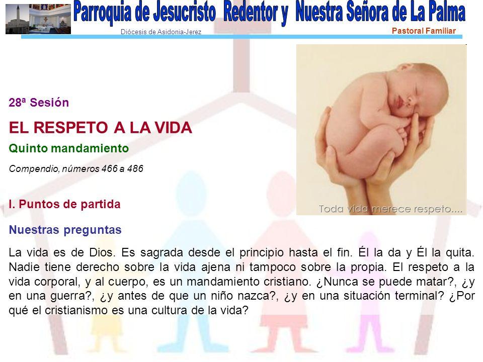 Diócesis de Asidonia-Jerez Pastoral Familiar 3.
