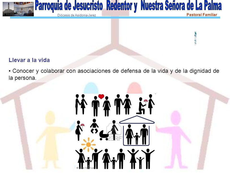 Diócesis de Asidonia-Jerez Pastoral Familiar Llevar a la vida Conocer y colaborar con asociaciones de defensa de la vida y de la dignidad de la persona.
