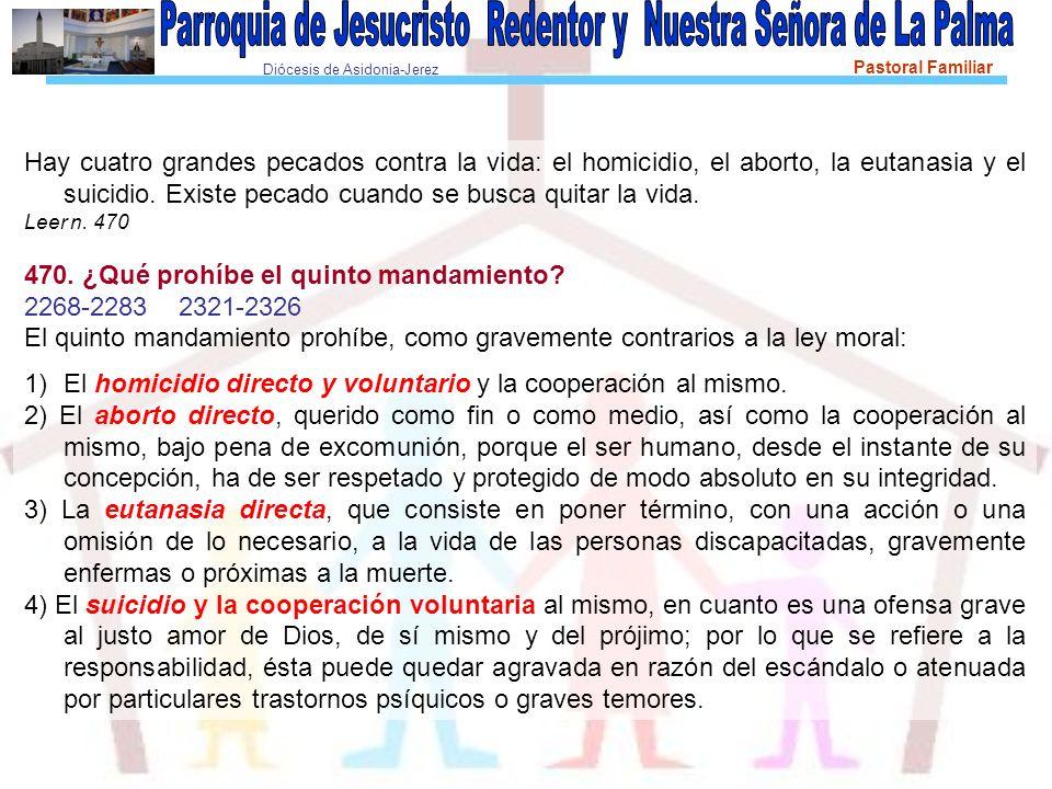Diócesis de Asidonia-Jerez Pastoral Familiar Hay cuatro grandes pecados contra la vida: el homicidio, el aborto, la eutanasia y el suicidio.