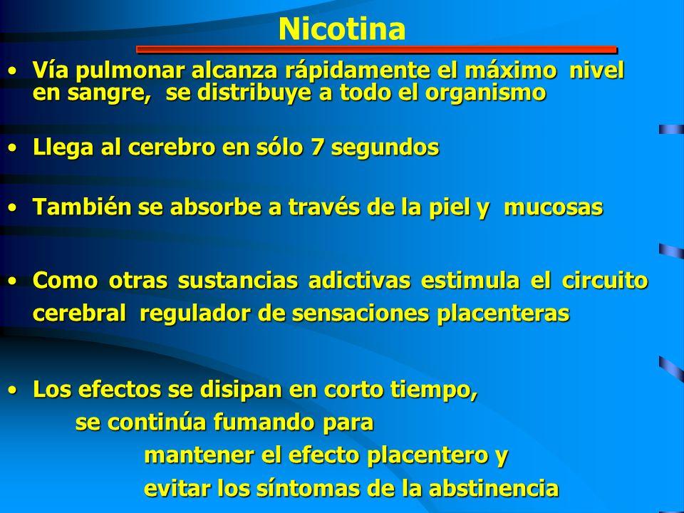 Nicotina Vía pulmonar alcanza rápidamente el máximo nivel en sangre, se distribuye a todo el organismoVía pulmonar alcanza rápidamente el máximo nivel