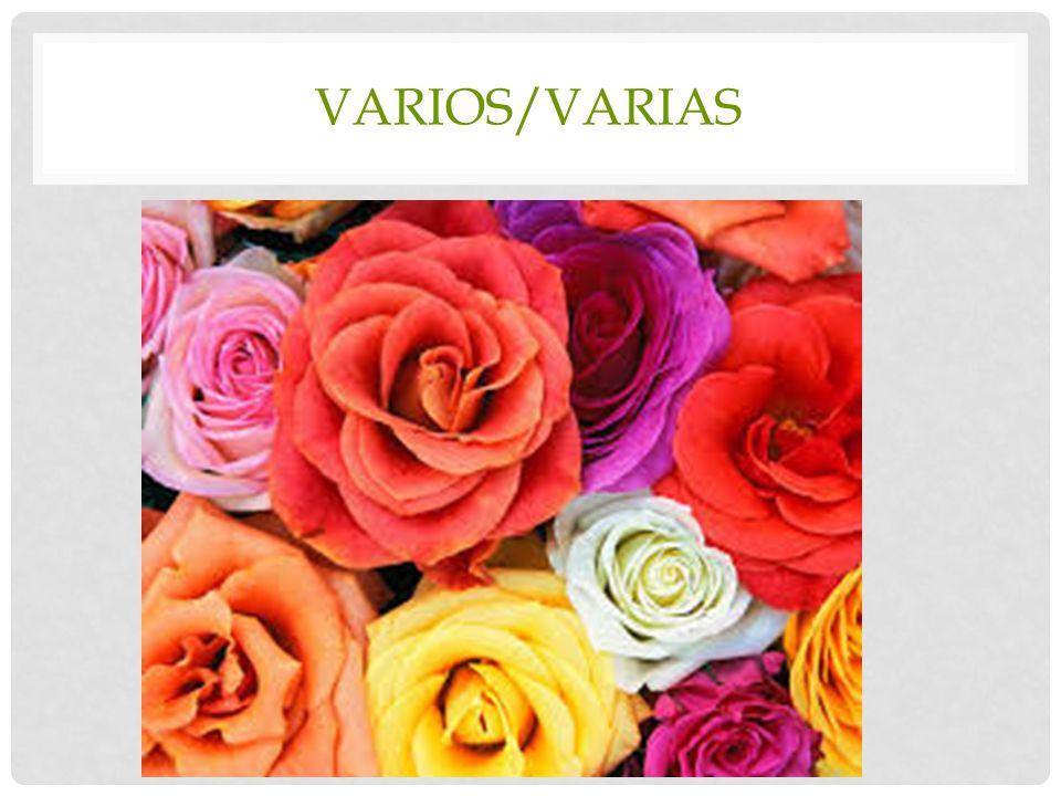 VARIOS/VARIAS