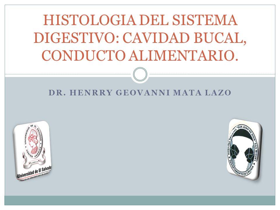 DR. HENRRY GEOVANNI MATA LAZO HISTOLOGIA DEL SISTEMA DIGESTIVO: CAVIDAD BUCAL, CONDUCTO ALIMENTARIO.