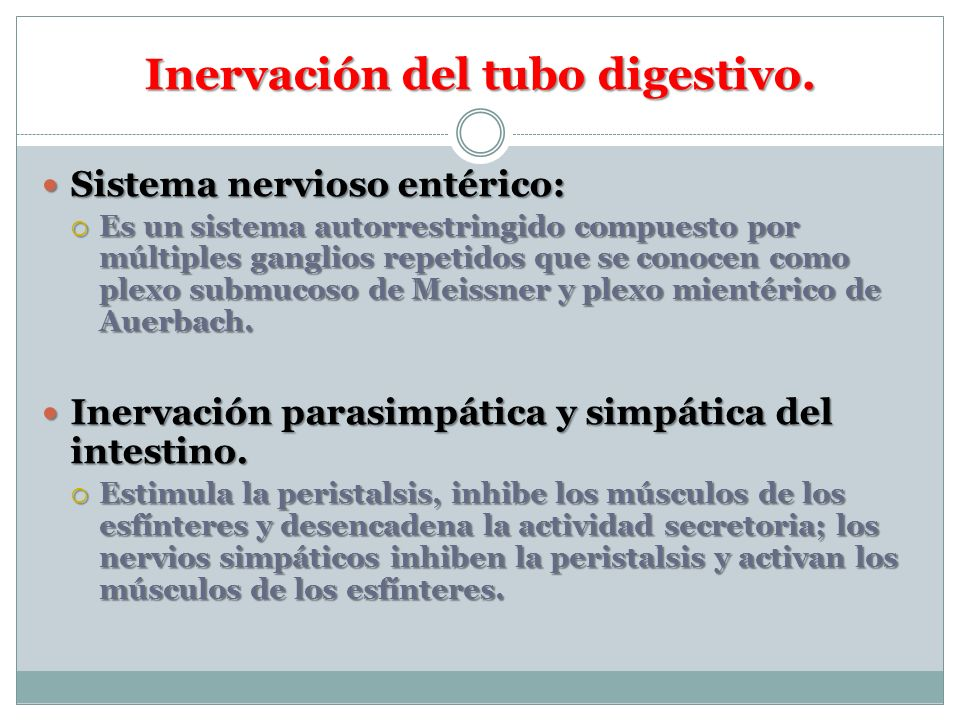 Inervación del tubo digestivo. Sistema nervioso entérico: Sistema nervioso entérico: Es un sistema autorrestringido compuesto por múltiples ganglios r