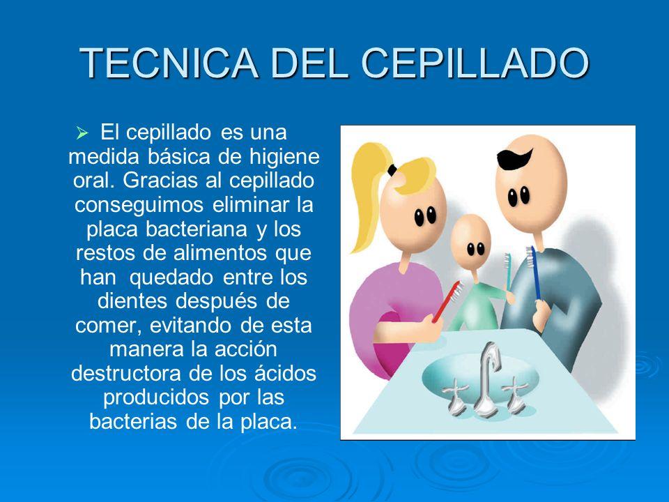 TECNICA DEL CEPILLADO El cepillado es una medida básica de higiene oral. Gracias al cepillado conseguimos eliminar la placa bacteriana y los restos de