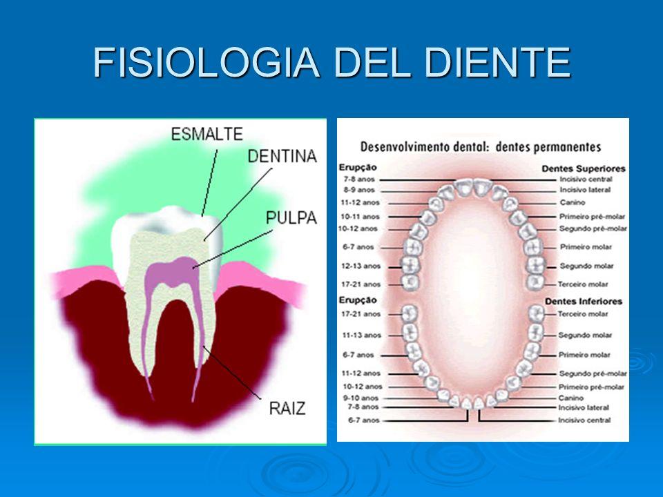 MATERIAL MATERIAL Cepillo dental Cepillo dental Pasta dental Pasta dental Hilo dental Hilo dental Enjuague bucal Enjuague bucal