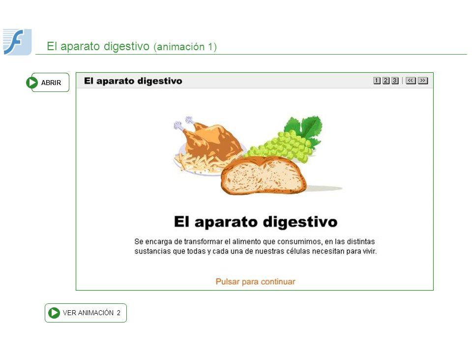 El aparato digestivo (animación 1) VER ANIMACIÓN 2 ABRIR