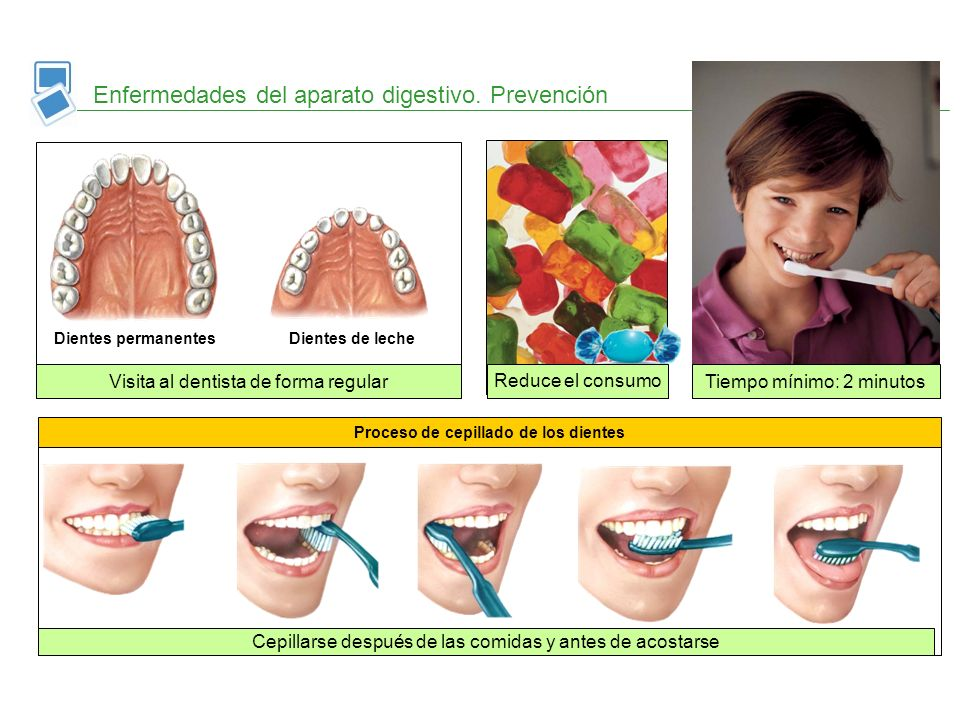 Proceso de cepillado de los dientes Cepillarse después de las comidas y antes de acostarse Enfermedades del aparato digestivo. Prevención Dientes perm