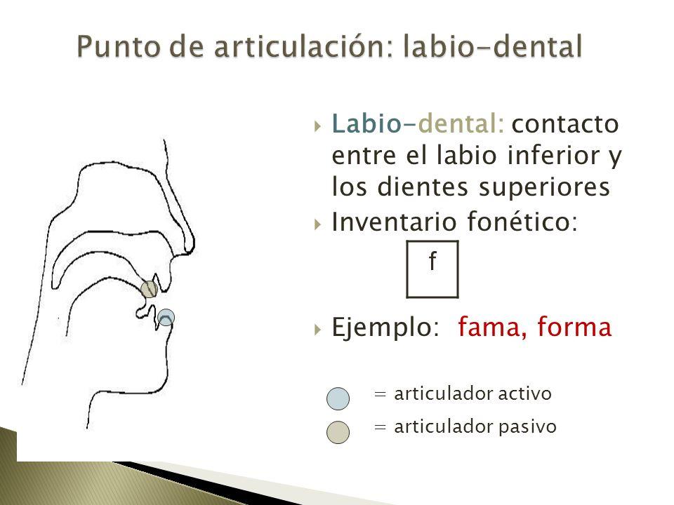 Labio-dental: contacto entre el labio inferior y los dientes superiores Inventario fonético: Ejemplo: fama, forma = articulador activo = articulador p