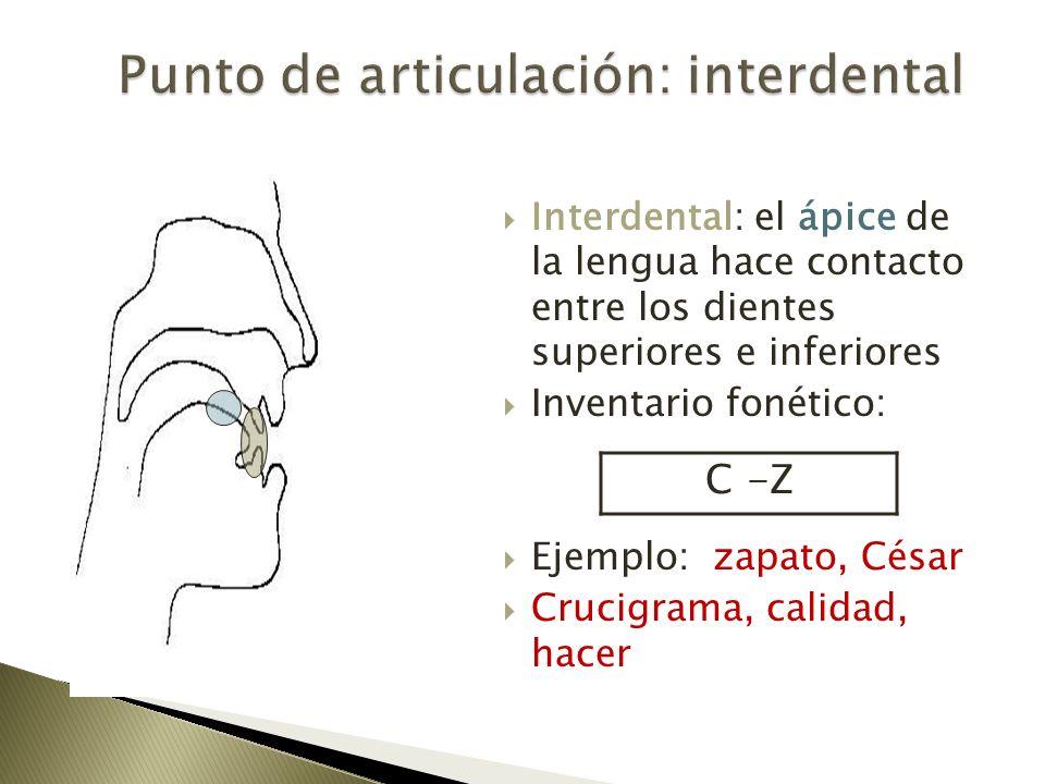 Interdental: el ápice de la lengua hace contacto entre los dientes superiores e inferiores Inventario fonético: Ejemplo: zapato, César Crucigrama, cal