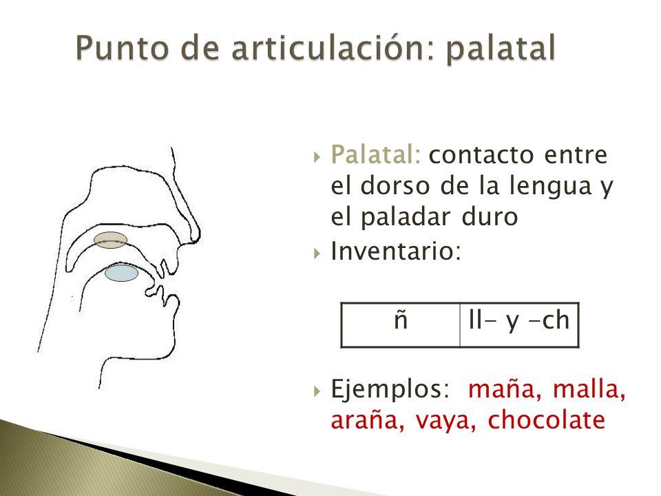 Palatal: contacto entre el dorso de la lengua y el paladar duro Inventario: Ejemplos: maña, malla, araña, vaya, chocolate ñll- y -ch