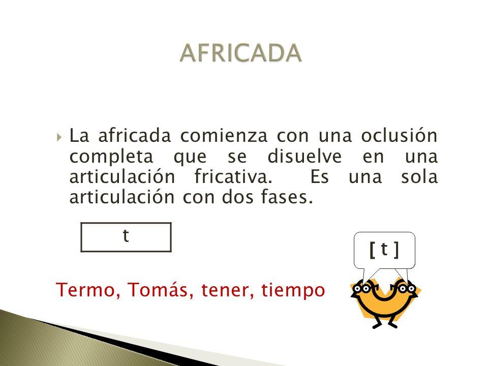 La africada comienza con una oclusión completa que se disuelve en una articulación fricativa. Es una sola articulación con dos fases. Termo, Tomás, te