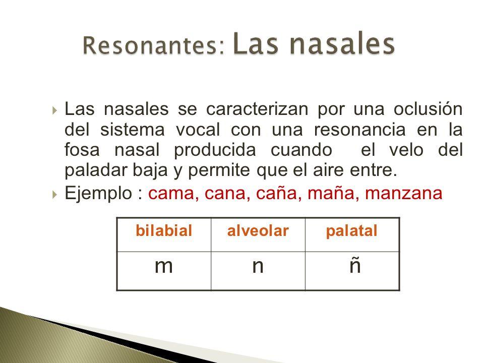 Las nasales se caracterizan por una oclusión del sistema vocal con una resonancia en la fosa nasal producida cuando el velo del paladar baja y permite