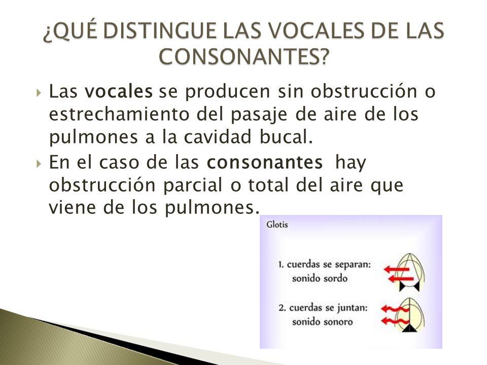 Las vocales se producen sin obstrucción o estrechamiento del pasaje de aire de los pulmones a la cavidad bucal. En el caso de las consonantes hay obst