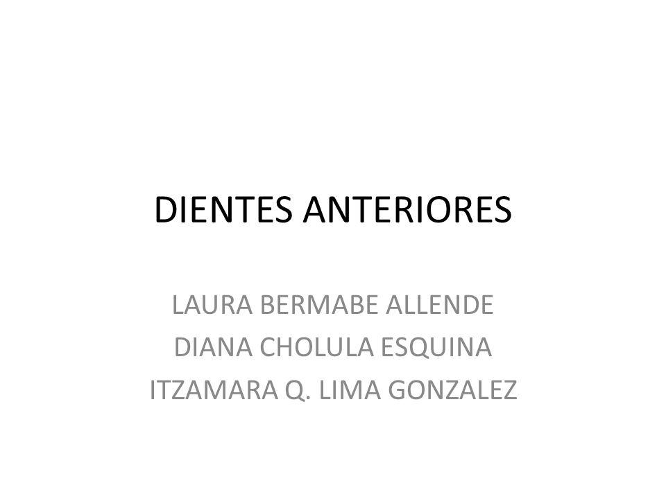 DIENTES ANTERIORES LAURA BERMABE ALLENDE DIANA CHOLULA ESQUINA ITZAMARA Q. LIMA GONZALEZ