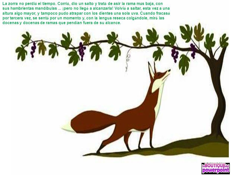 La zorra no perdi ó el tiempo. Corri ó, dio un salto y trat ó de asir la rama m á s baja, con sus hambrientas mand í bulas... ¡ pero no lleg ó a alcan
