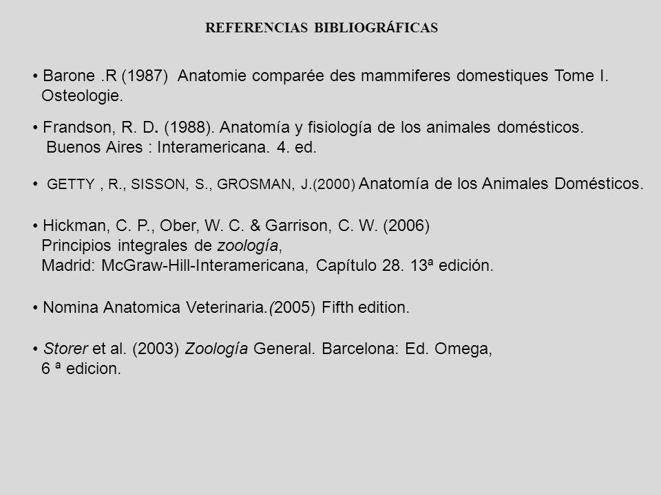 REFERENCIAS BIBLIOGR Á FICAS Barone.R (1987) Anatomie comparée des mammiferes domestiques Tome I. Osteologie. Frandson, R. D. (1988). Anatomía y fisio