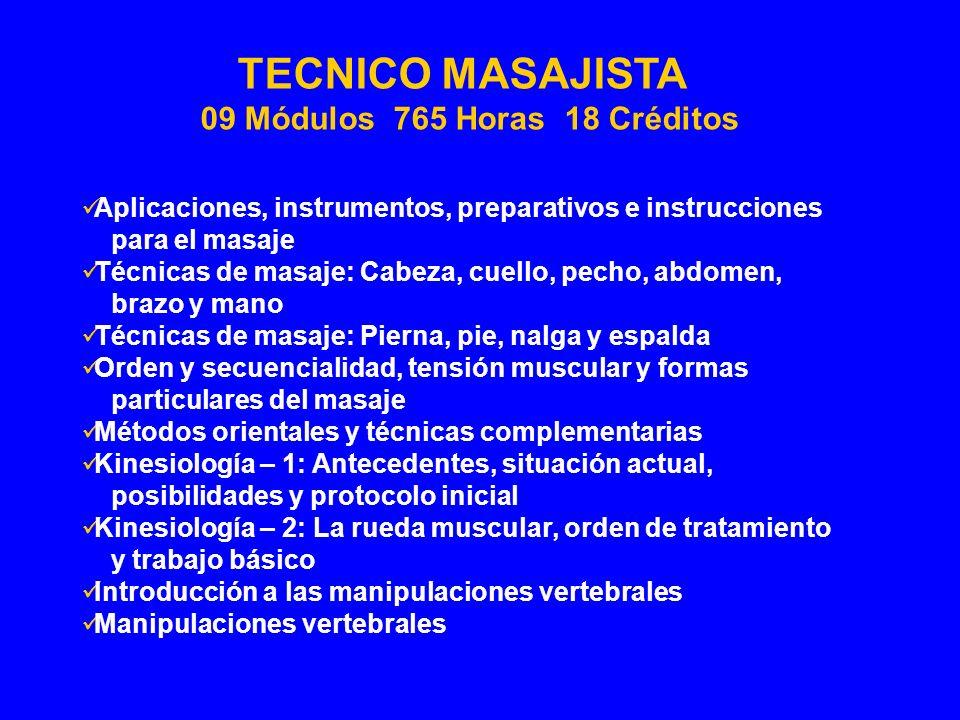 Aplicaciones, instrumentos, preparativos e instrucciones para el masaje Técnicas de masaje: Cabeza, cuello, pecho, abdomen, brazo y mano Técnicas de m