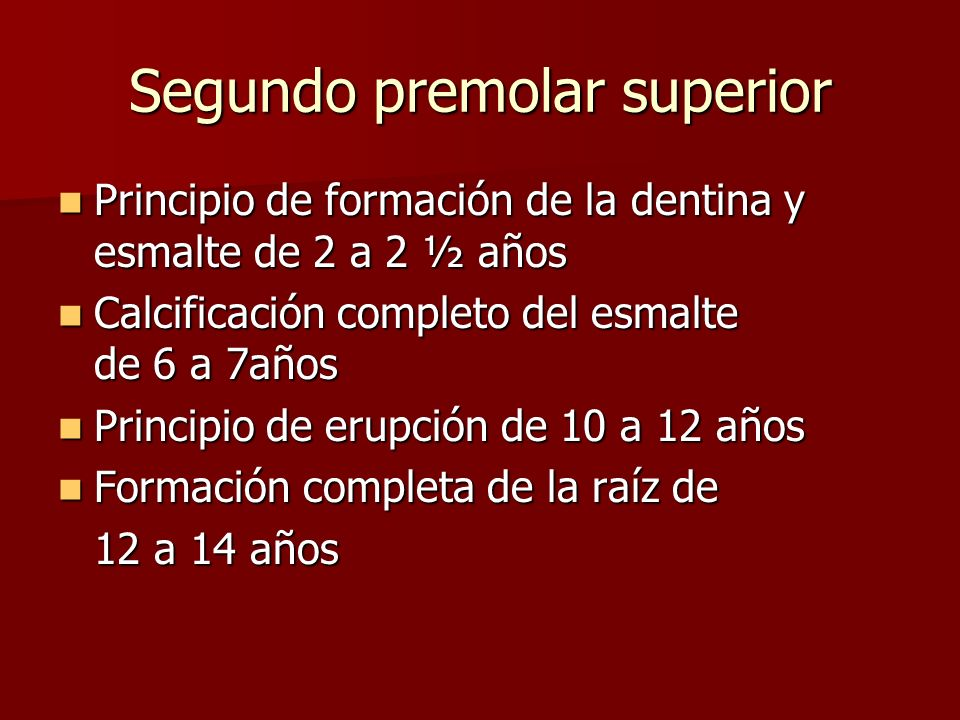 Principio de formación de la dentina y esmalte de 2 a 2 ½ años Principio de formación de la dentina y esmalte de 2 a 2 ½ años Calcificación completo d